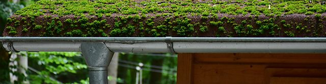 Gutter Cleaning And Maintenance Checklist
