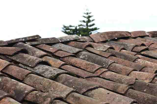 Smart Roof Maintenance Tips