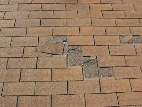 Roof Wellington - Broken shingles