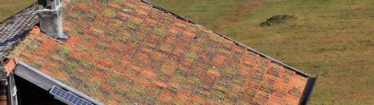 roof-inspection-Wellington-services-NZ