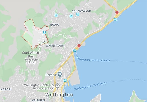 Crofton downs plumbing services wellington nz